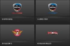 Team Logos of the Teams in the Regional OGN Tournament