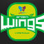 Jin Air Green Wings - LCK Team Logo