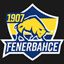League of LEgends Fenerbahce Esport Logo LoL